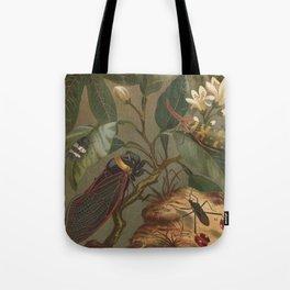 Antique Cicada Lithograph Tote Bag