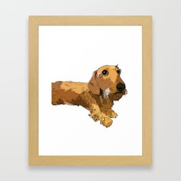 Hans the dachshund Framed Art Print