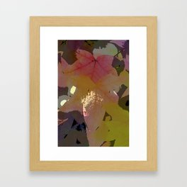 Leaves 8 Framed Art Print