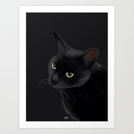Black cat in the dark Art Print