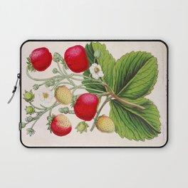 Strawberry Delights Vintage Botanical Floral Flower Plant Scientific Illustration Laptop Sleeve