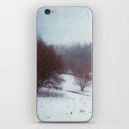 misty winterscape iPhone Skin