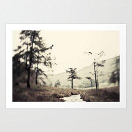 Blea Tarn Art Print