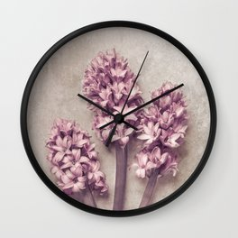 Lovely pink Hyacinths Wall Clock