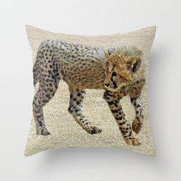 Baby cheetah learning to stalk Throw Pillow