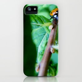 The long climb iPhone Case