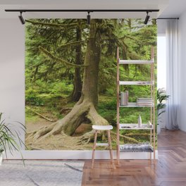 Roots Wall Mural