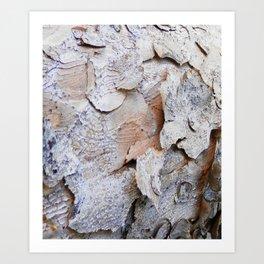 Tree Bark rustic decor Art Print