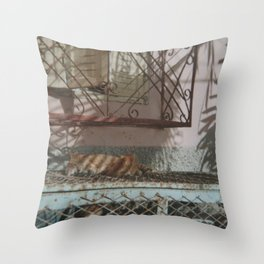 Cats, Taghazout Throw Pillow