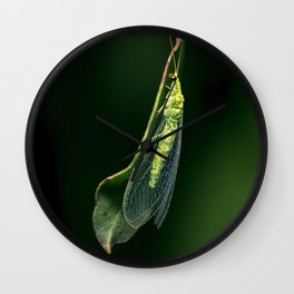 Green Large Lacewing Wall Clock