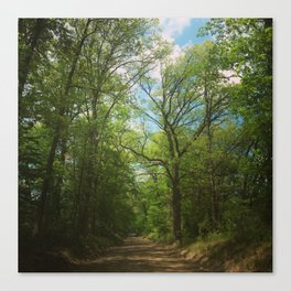 Pathway to Heaven Canvas Print