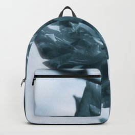 """""""Rose Theatre"""" by ICA PAVON Backpack"""