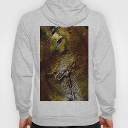 fusion abstract Hoody