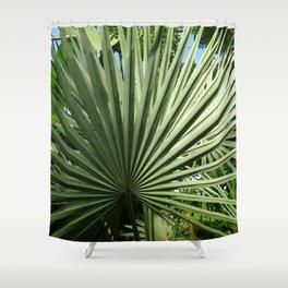 Fan Palm Shower Curtain
