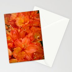 Give me an Orange, Julius Stationery Cards
