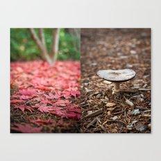Fall + Fall Canvas Print