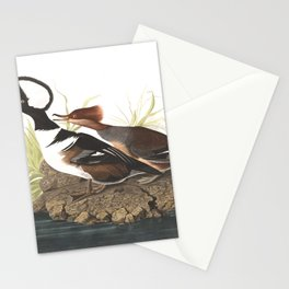 Hooded merganser save for web v, Birds of America, Audubon Plate 232 Stationery Cards