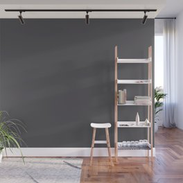 Dark Smoke Gray Solid Color Pairs With Sherwin Williams 2020 Trending Color Perle Noir SW9154 Wall Mural