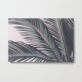 Sago Palm Metal Print
