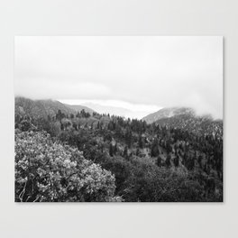 Fog Rolls In Canvas Print