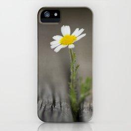 simply daisy iPhone Case