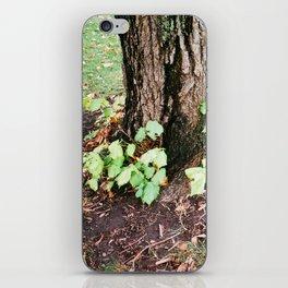 Green_1 iPhone Skin