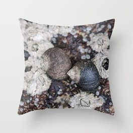 Periwinkles and Barnacles on a rock Throw Pillow