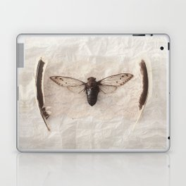P.S. Laptop & iPad Skin
