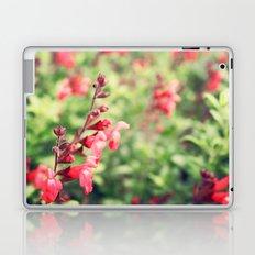 Spring time! Laptop & iPad Skin