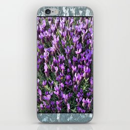 SPANISH LAVENDER AND ONE BEE iPhone Skin