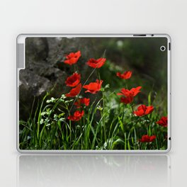 Anemones and Rock Laptop & iPad Skin