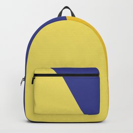 Color block #5 Backpack