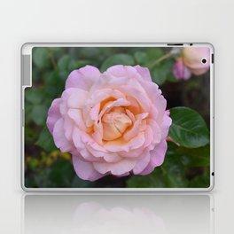 Rose Bloom Laptop & iPad Skin