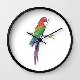 Caribe colors Wall Clock