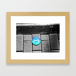 Swimming with the Fishes Framed Art Print