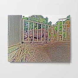 Rhino behind large metal gates. Metal Print