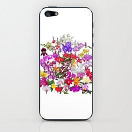 A celebration of orchids iPhone Skin