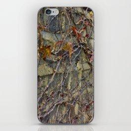 Wall climbers iPhone Skin