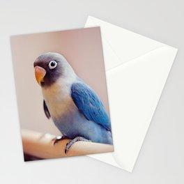 Lovey Emma Stationery Cards