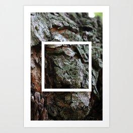 burl ~ nature photo manipulation Art Print