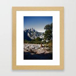 A cat enjoying the view - Montserrat, Spain Framed Art Print