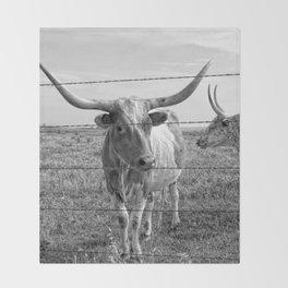 Longhorn Cows Throw Blanket