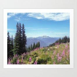 Summer Ski Slope in Whistler Art Print