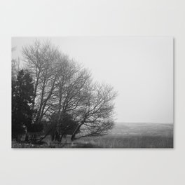 Winter's Desolace Canvas Print