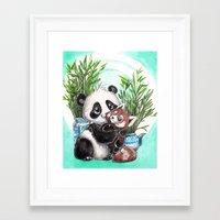 red panda Framed Art Prints featuring Panda red panda by Bianca Roman-Stumpff