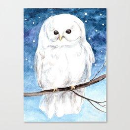 White Barn Owl Art, Winter art, Night Sky Canvas Print