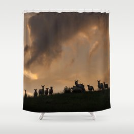Evening time Shower Curtain