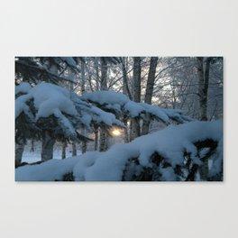 Midwinter Sun Canvas Print