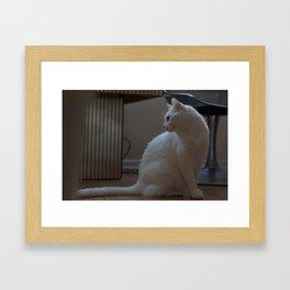 cat look Framed Art Print