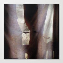 Shadows + Curtains #2 Canvas Print